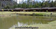Kolam Pancing di Emte Haigland Resort – HOTELCIWIDEY.COM