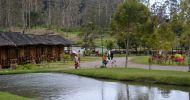 Ingin Sewa Harga Penginapan Di Walini Ciwidey  Sangat Dekat ke Kawah Putih Ciwidey Update 2020 untuk Keluarga Besar dari Tigaraksa