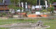Mau Sewa Ciwidey Resort  Tidak Jauh ke Kawah Putih Update 2020 for Bapak dari Pandeglang