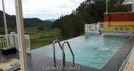 Hotel Murah Di Ciwidey Bandung 2018 – HotelCiwidey.Com
