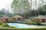 Hotel Honeymoon Di Ciwidey – HotelCiwidey.Com