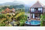 9 Hotel di sekitaran Ciwidey, Bandung bernuansa tengah hutan yang sejuk